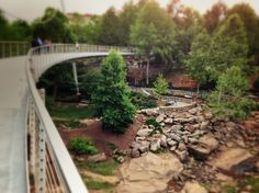 Liberty Bridge spans the falls at Falls Park on the  Reedy River. Swamp Rabbit Trail (center of photo) meanders through downtown Greenville, SC on its journey to Furman University. Swamp River Trail is the Upstate's gateway to the Appalachian Trail.