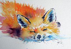 Red Fox Painting - Red Fox Sleeping by Kovacs Anna Brigitta