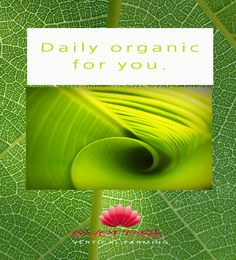 Daily organic for you.  EVEREST - Vertical Farming