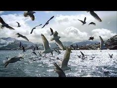 Eurythmics - Here Comes The Rain Again (Freemasons Remix) - YouTube