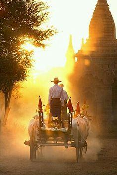 bullock cart through Bagan Myanmar @Robert Harding