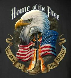 Because of the Brave Cross Stitch Pattern ON CD-Patriotic, Eagle, Flag, Military Patriotic Pictures, Eagle Pictures, Eagle Images, I Love America, God Bless America, American Flag Eagle, American Pride, American Freedom, Mexican American