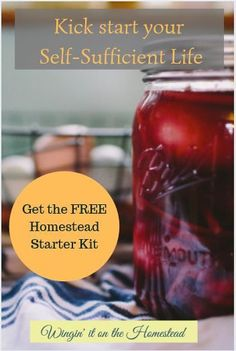 Want to live a self-sufficient life but don't know where to start? Check out the Free Homestead Starter Kit! Gardening For Beginners, Gardening Tips, Flower Gardening, Homestead Gardens, Homestead Farm, Homestead Living, Self Sufficient Homestead, Planting Vegetables, Vegetable Gardening