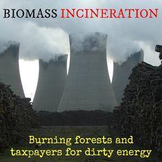 "SPEAK OUT! Help Protect Americans from Biomass Energy Air Pollution!   There's no need for investment in false, polluting ""transition"" technologies that divert us from clean energy generation. Conservation, efficiency measures, and clean, renewable technology is available right now. PLZ Sign & Share!  https://www.change.org/petitions/senator-ron-wyden-protect-americans-from-biomass-energy-air-pollution"