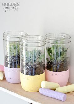 Paint dipped mason jar planter - painted mason jar planter - succulents planted in mason jars - mason jar planter ideas - how to paint dip mason jars Mason Jar Plants, Mason Jar Succulents, Mason Jar Garden, Pot Mason, Mason Jar Diy, Jar Crafts, Easter Crafts, Easter Decor, Easter Food