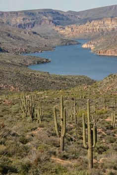 Apache Lake on the Apache Trail in Arizona http://roadslesstraveled.us/apache-trail-scenic-drive-arizona/