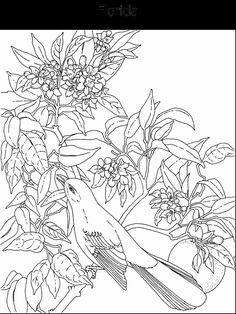 19 Best Coloring Pages