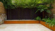 Plants for Contemporary Gardens John Davies designed contemporary garden with Black Bamboo and Tree Ferns Urban Garden Design, Contemporary Garden Design, Patio Design, Modern Design, Fargesia, Ferns Garden, Garden Fencing, Shade Garden, Black Bamboo