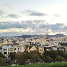 Alta Plaza Park - my favorite neighborhood park (lafayette park is also excellent)