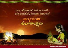 wish happy telugu bhogi pongal and makar sankranti in 2015 messages greetings
