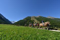 Il Viaggiatore Magazine - Tra gli sport praticabili a Cogne, passeggiate a cavallo