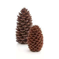 Pinecone Candles  | Crate and Barrel