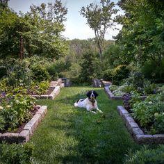 cottage Garden room Landscape Designer Visit: A Charming Cottage Garden Outside of Boston - Gardenista Fresco, Landscape Design, Garden Design, New England Cottage, Dutch Gardens, Historic New England, Vegetable Garden Tips, Garden Soil, Garden Beds