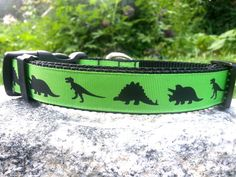 Dinosaur 1 Inch Width Dog Collar by WillyWoofs on Etsy, $16.00