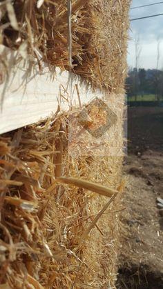 Construção ecológica com painel da palha prensada.