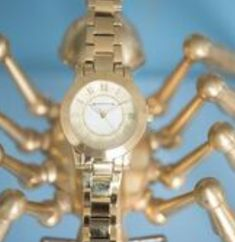 Newbridge Silverware watches are renowned for their design & style. View our elegant range of ladies' & men's watches. Ladies Watches, Watches For Men, Unisex, Female, Lady, Fashion Design, Accessories, Jewelry, Woman Watches