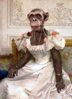 Chimpanzee - Worth1000 Contests