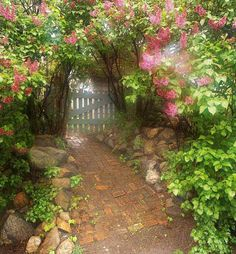 Come thru the Garden Gate and sit a spell....the flowers love to listen and they never never tell!