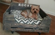 How To Make A DIY Pallet Dog Bed For Your Furbaby | The WHOot