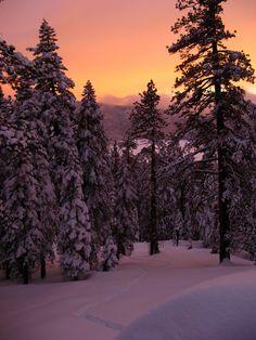 Sunset tracks - Kaiser Wilderness, California ~   Photo by COmtneer on Flickr, Photo Sharing!