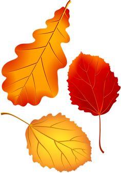 "Photo from album ""Ветки. Fall Arts And Crafts, Autumn Crafts, Autumn Painting, Autumn Art, Hessian Crafts, Autum Leaves, Printable Leaves, Fall Clip Art, Tree Stencil"