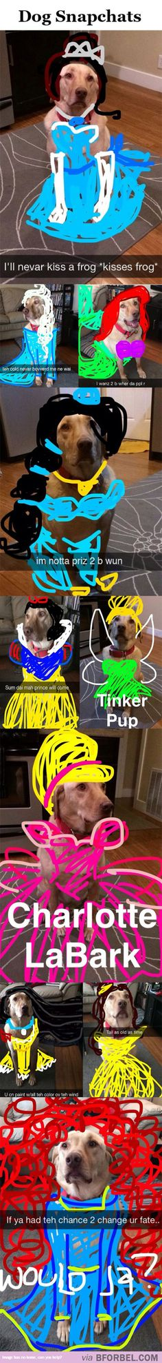 10 Snapchats That Turned This Dog Into A Disney Princess