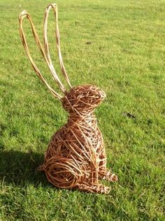 willow hare - Google Search