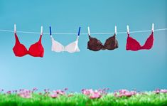 Your bra will actually last longer if you wash it correctly. HowStuffWorks explores how often to wash your bra. Prince Charmant, Rule Of Three, Delicate Wash, Do You Really, Injury Prevention, Take Care Of Yourself, What I Wore, Swimwear, Love
