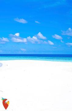 AIDA Kreuzfahrt zum Mega-Preis #travel #aida #cruise #maldives