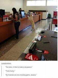 Responsible Dog: