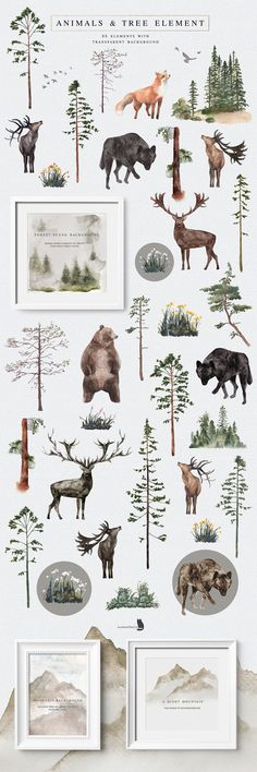 Into the Wild is an collection inspired by nature, with gorgeous flowers and the beauty of pine woodland. Let's every Wild Alphabet bring you to another forest Watercolor Flowers, Watercolor Paintings, Watercolors, Bear Watercolor, Watercolor Illustration, Graphic Illustration, Wild Forest, Wild Nature, Floral Bouquets