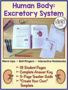 Human Body Excretory System. NO PREP Biology or Life Science Warm-Ups, Bell-Ringers, Exit Slips, and / or Additions to Interactive Notebooks for your unit on the human excretory system. No gluing, cutting or folding required!