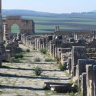 Archaeological Site of Volubilis Volubilis, Site Archéologique, Heritage Center, Archaeological Site, List, See It, World Heritage Sites, Paris Skyline, Africa