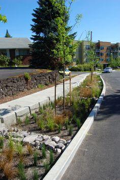Portland greenstreet. Visit the slowottawa.ca boards:  http://www.pinterest.com/slowottawa/