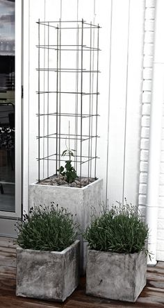 Concrete planters elevate plantings and anchor the landscape - trellis made from stainless steel reinforcement mesh Garden Trellis, Balcony Garden, Garden Planters, Hops Trellis, Wire Trellis, Concrete Planters, Garden Projects, Garden Inspiration, Vertical Gardens