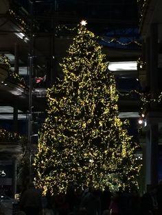 Riesiger Weihnachtsbaum mit 40.000 Lichter in der Mercedes Welt Berlin 2014