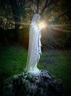 Catholic Pictures, Jesus Pictures, Blessed Mother Mary, Blessed Virgin Mary, Marian Garden, Virgin Mary Statue, Prayer Garden, Lady Of Lourdes, Sainte Marie