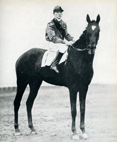 Exterminator was an American racehorse and the winner of the 1918 Kentucky Derby, and in 1922 won Horse of the Year honors.