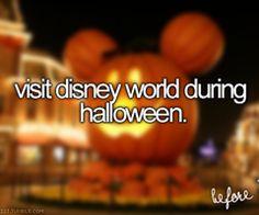 Disney World | via Tumblr