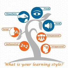 We access information mainly through our three senses: see (#visual), hear (auditory) and feel (#kinesthetic).