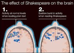 Shakespeare and brain activity--share with class when we begin Shakespeare unit!