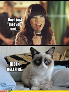 Grumpy cat, meme