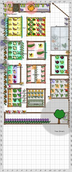 Garden Plan - South Garden