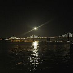 Eventbrite's #SFYesAddress // The Exploratorium After Dark.