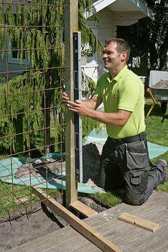 Vindskydd terrass Porch Garden, Garden Trellis, Garden Fencing, Fence, Landscape Structure, Diy Pergola, Yard Art, Gardening, Backyard Landscaping