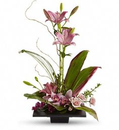 Imagination Blooms with Cymbidium Orchids in Gastonia NC, Fine And Fancy Flowers