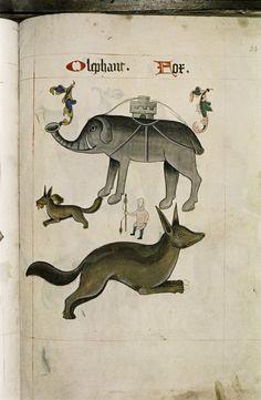 Tudor Bestiary, 1520 - Retronaut