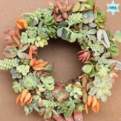 This DIY succulent wreath is major holiday decor goals - Instead of the traditional wreath made of pine or holly, this DIY succulent wreath is eco-friendly, colorful, and sure to make your season -- a Succulent Gardening, Cacti And Succulents, Planting Succulents, Succulent Containers, Indoor Succulent Garden, Blooming Succulents, Succulent Bowls, Flowering Succulents, Vertical Succulent Gardens