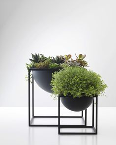 Shop online the iconic Kubus Bowl + Kubus Candle Holder By Lassen. Made from lacquered steel, Kubus By Lassen is the epitome of Scandinavian minimalistic design Indoor Garden, Indoor Plants, Outdoor Gardens, Ikea Plants, Pot Plants, Hanging Plants, Deco Floral, Interior Plants, Houseplants