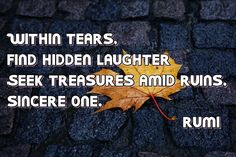 """""""Within tears, find hidden laughter Seek treasures amid ruins, sincere one."""" - Rumi"""